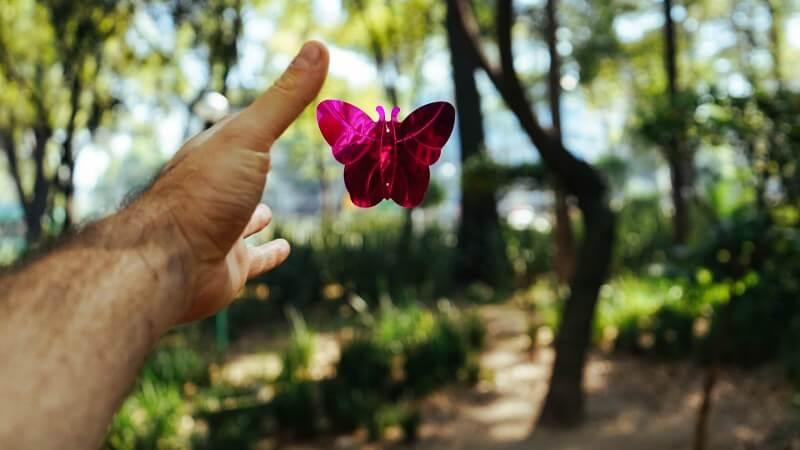 Heftige Probleme können sich wandeln: Von der Raupe zum wunderschönen Schmetterling