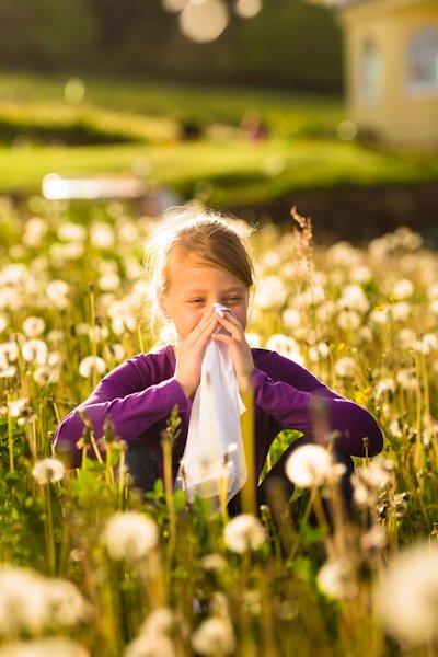 Heuschnupfen & andere Allergien